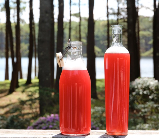 rhubarb-ginger-syrup-dede-wilson#1
